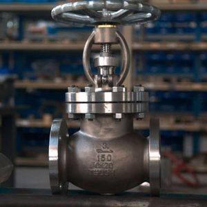 Valves for the oil and gas industry: gate, globe, check, butterfly, control