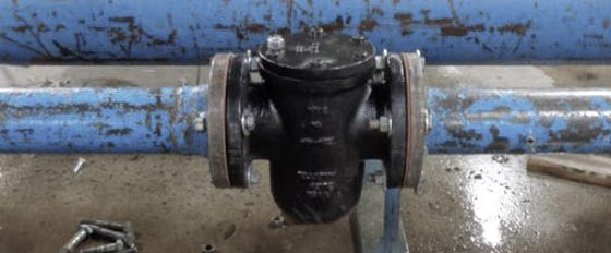 Pipe Strainers (Y and Basket)